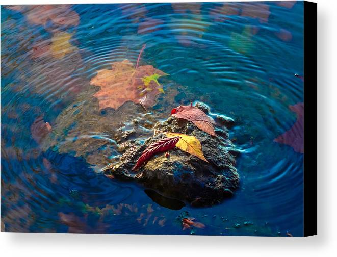 Canvas Print featuring the photograph Autumn On The Rocks by Brian Stevens