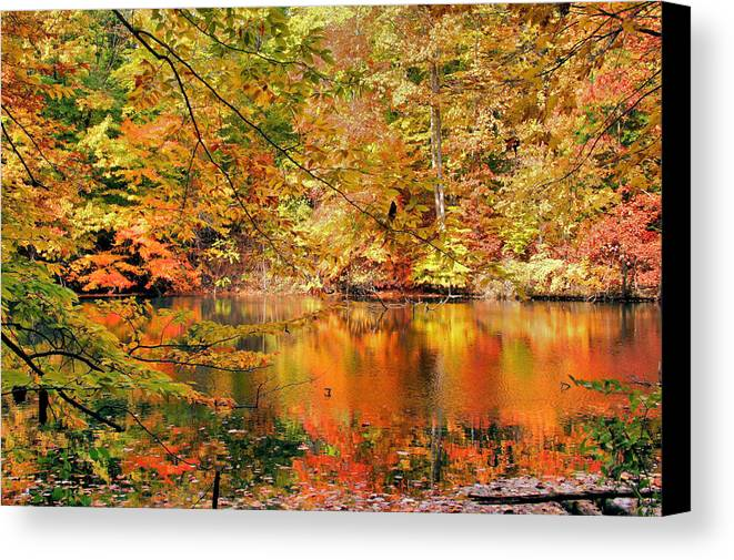 Autumn Canvas Print featuring the photograph Autumn Reflections by Kristin Elmquist