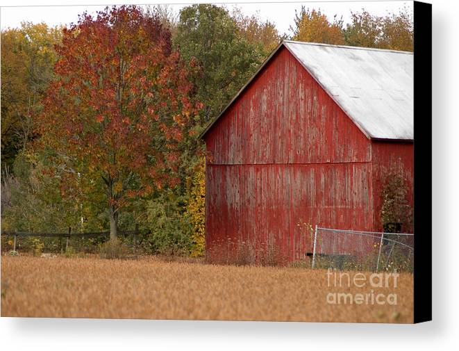 Barn Canvas Print featuring the photograph Autumnal Barn by Ginger Harris