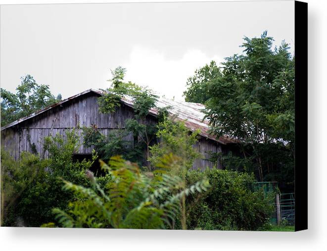 Barn Canvas Print featuring the photograph Barn In The Storm by Stephani JeauxDeVine