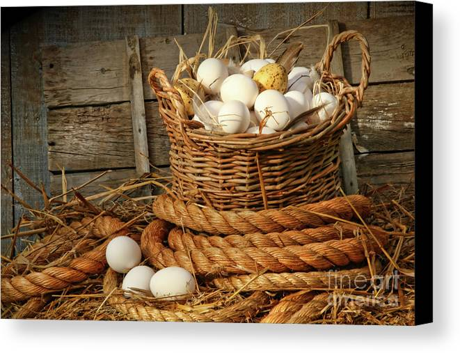 Agriculture Canvas Print featuring the photograph Basket Of Eggs On Straw by Sandra Cunningham