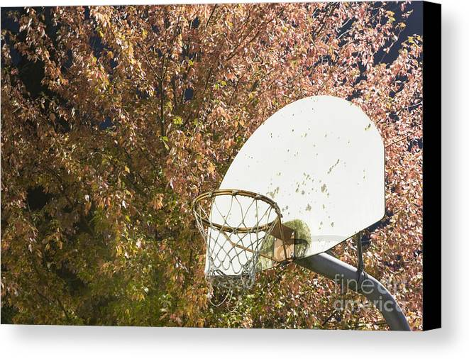 Athletics Canvas Print featuring the photograph Basketball Hoop by Andersen Ross