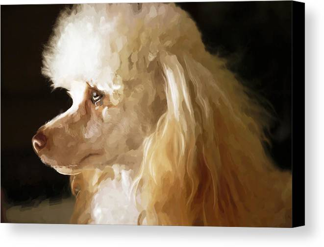 Dogs Canvas Print featuring the digital art Bella by Mickey Clausen