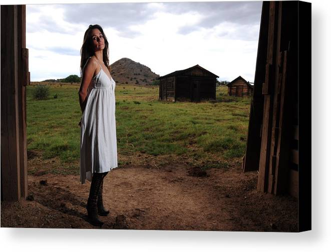 Barn Door Canvas Print featuring the photograph Beyond The Barn Door by Dale Davis