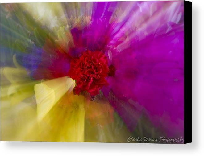 Flower Canvas Print featuring the photograph Bloom Zoom2 by Charles Warren