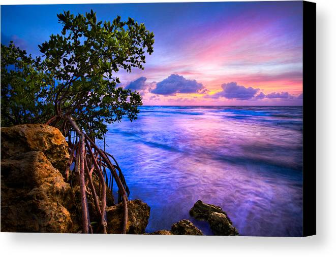 Clouds Canvas Print featuring the photograph Blue Tide by Debra and Dave Vanderlaan