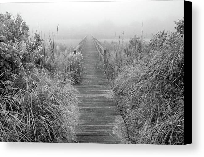 Quogue Wildlife Preserve Canvas Print featuring the photograph Boardwalk In Quogue Wildlife Preserve by Rick Berk