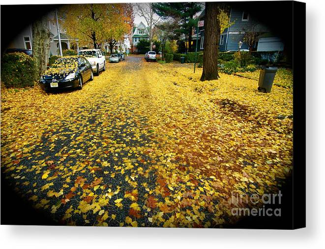 Fall Leaves Canvas Print featuring the photograph Brooklyn New York by Mark Gilman
