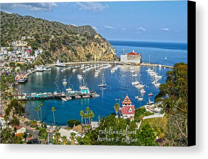 Travel Canvas Print featuring the photograph Catalina by Marie Morrisroe