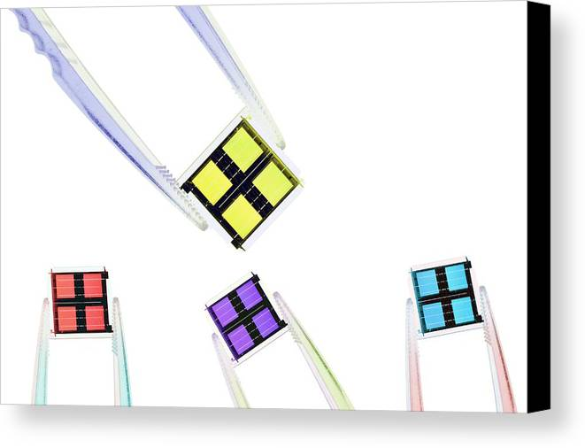 Equipment Canvas Print featuring the photograph Coloured Microchips by Gombert, Sigrid