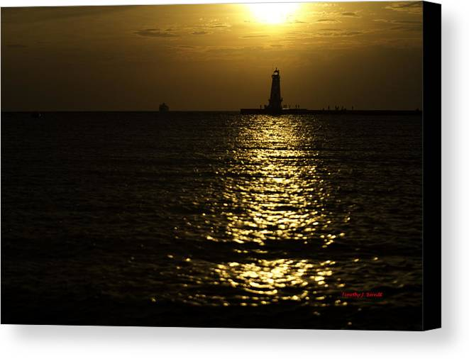 Landscape Canvas Print featuring the photograph Coming Home by Timothy J Berndt