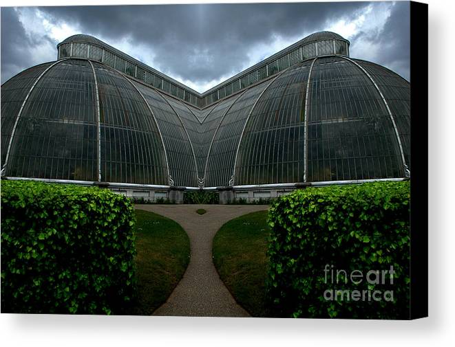 Canvas Print featuring the photograph Creation 391 by Mike Nellums