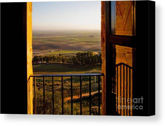 World Canvas Print featuring the photograph Cultivated Land In Spain by Spencer Grant and Photo Researchers
