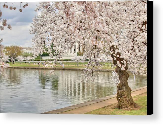 Metro Canvas Print featuring the digital art Digital Liquid - Cherry Blossoms Washington Dc 6 by Metro DC Photography