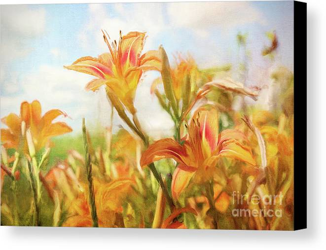 Art Canvas Print featuring the photograph Digital Painting Of Orange Daylilies by Sandra Cunningham