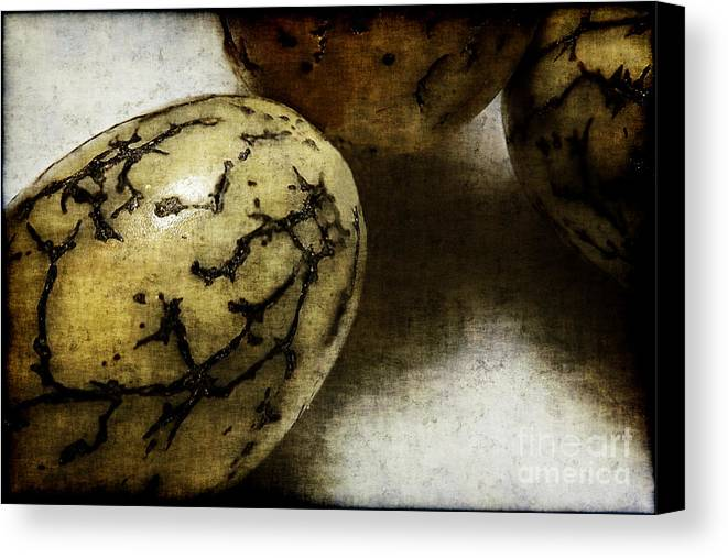 Dragon Canvas Print featuring the photograph Dragon Eggs by Judi Bagwell