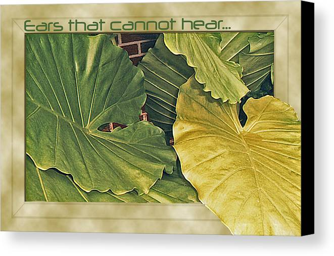Photo Canvas Print featuring the photograph Ears That Cannot Hear... by Larry Bishop