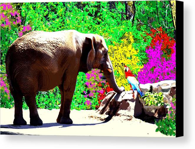Elephant Canvas Print featuring the photograph Elephant-parrot Dialogue by Rom Galicia