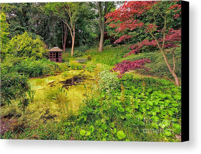 Countryside Canvas Print featuring the photograph English Garden by Adrian Evans