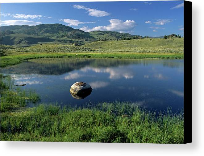 Horizontal Canvas Print featuring the photograph Erratic Boulder And Small Pond In Lamar Valley by Altrendo Nature