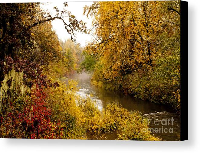 Willamina Creek Canvas Print featuring the photograph Fall Splendor by Margaret Hood