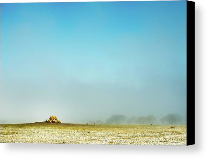 Horizontal Canvas Print featuring the photograph Feeding Time by Paul McGee