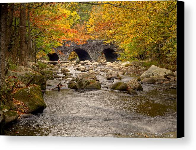 Stream Canvas Print featuring the photograph Fishing Bridge I by Charles Warren