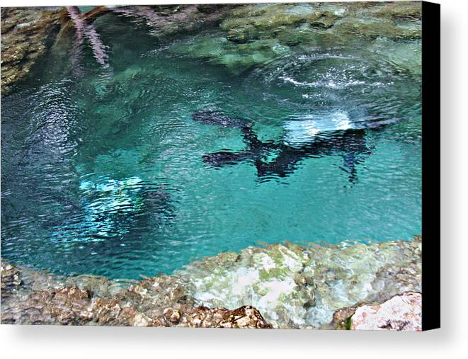 Florida Canvas Print featuring the photograph Florida Springs Cave Divers by David Brown