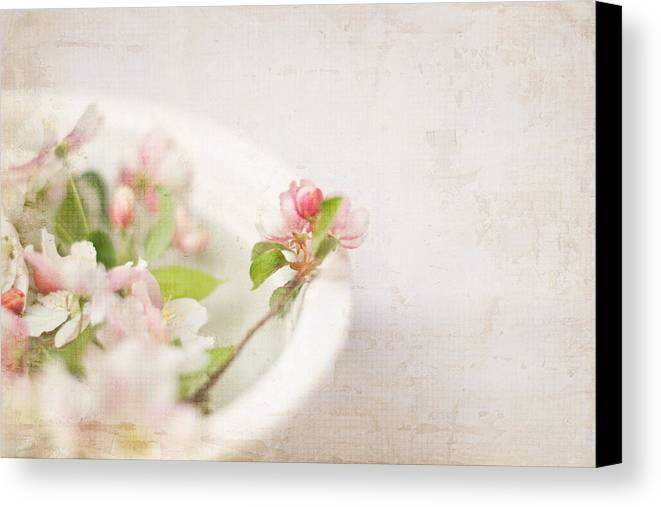 Photograph Canvas Print featuring the photograph Flowering Crabapple In Bowl by Cheryl McCain