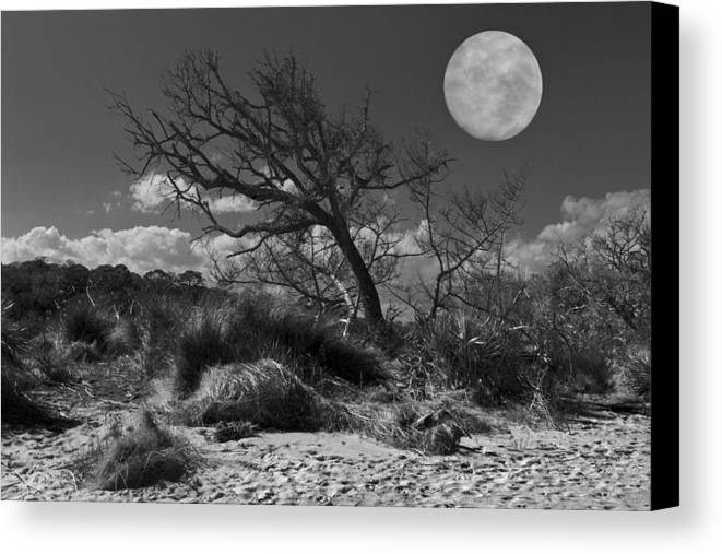 Fine Canvas Print featuring the photograph Full Moon Over Jekyll by Debra and Dave Vanderlaan