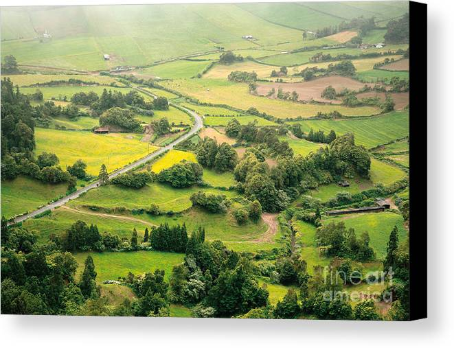 Rural Canvas Print featuring the photograph Green Valley by Gaspar Avila