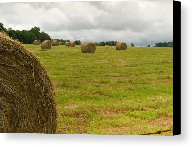 Haybales Canvas Print featuring the photograph Haybales In Field On Stormy Day by Douglas Barnett