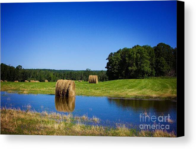 Pond Canvas Print featuring the photograph High And Dry On The North Forty by The Stone Age
