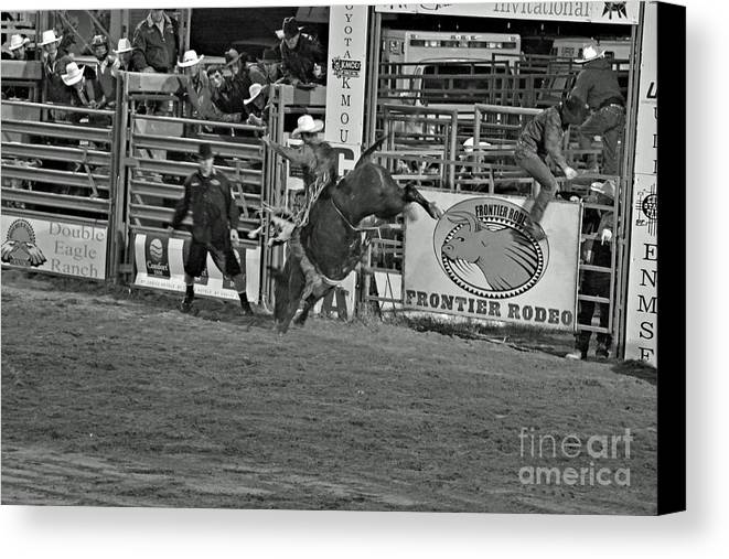 Bull Riding Canvas Print featuring the photograph Hold On For 8 by Shawn Naranjo