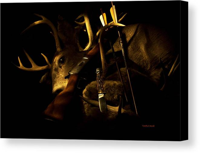 Deer Canvas Print featuring the photograph Hunting by Timothy J Berndt