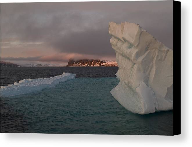 Svalbard Canvas Print featuring the photograph Ice Formations Float In Blue Water by Norbert Rosing