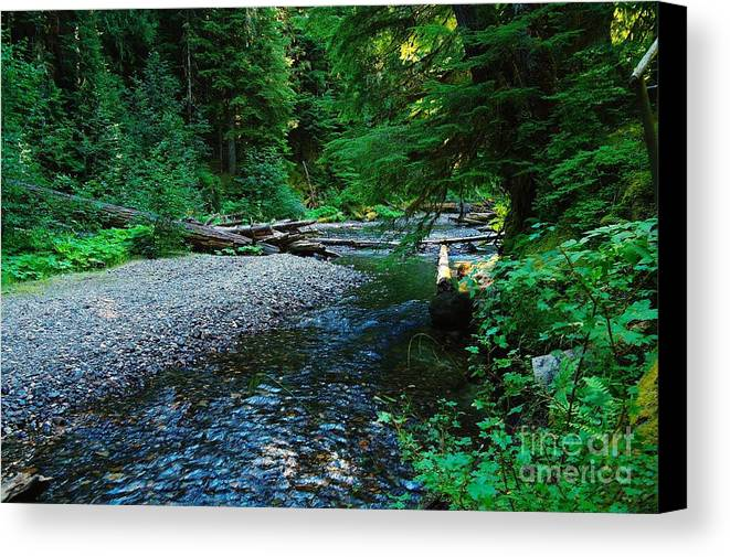 Water Canvas Print featuring the photograph Iron Creek by Jeff Swan