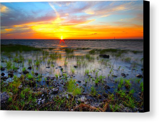 Sunset Canvas Print featuring the photograph Lake Okeechobee Sunset by Tracy Welker