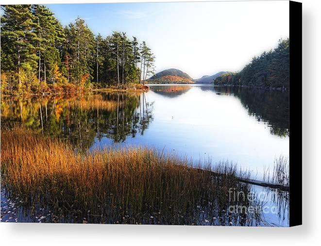Landscape Canvas Print featuring the photograph Lake Reflections In Acadia by George Oze