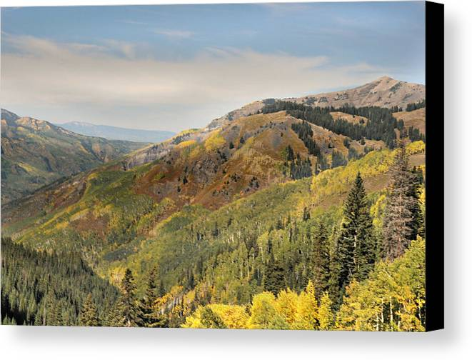 Mountains Canvas Print featuring the photograph Lead King Basin Road 2 by Marty Koch
