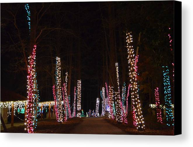 Lights Canvas Print featuring the photograph Lighted Path by Stacy Brock