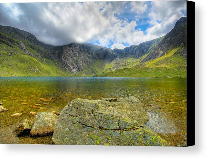 Plants Canvas Print featuring the photograph Llyn Idwal by Adrian Evans