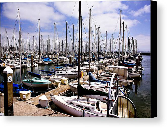 Sailing Canvas Print featuring the photograph Marina by Sean Gillespie