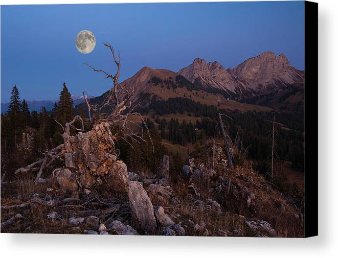 Horizontal Canvas Print featuring the photograph Mistress Of Night by Ars Silentium