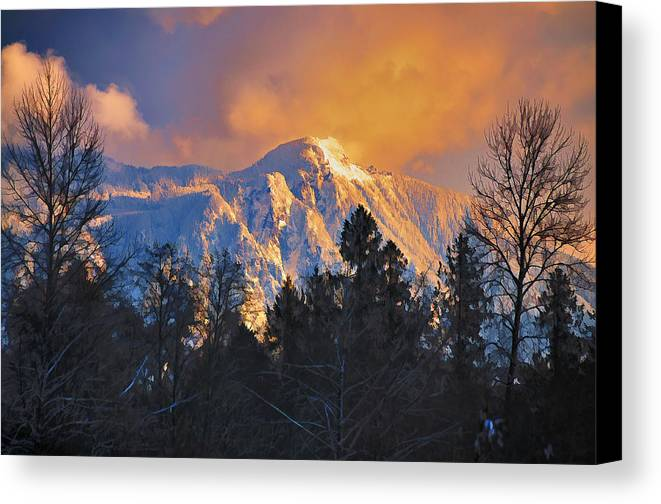 Mount Si Canvas Print featuring the photograph Mount Si Winter Wonder by Scott Massey