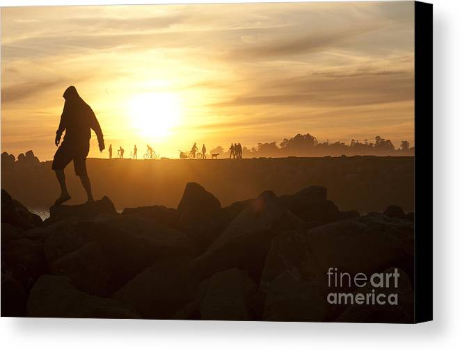 Silhouette Canvas Print featuring the photograph Ordinary Day Extraordinary Life by Artist and Photographer Laura Wrede