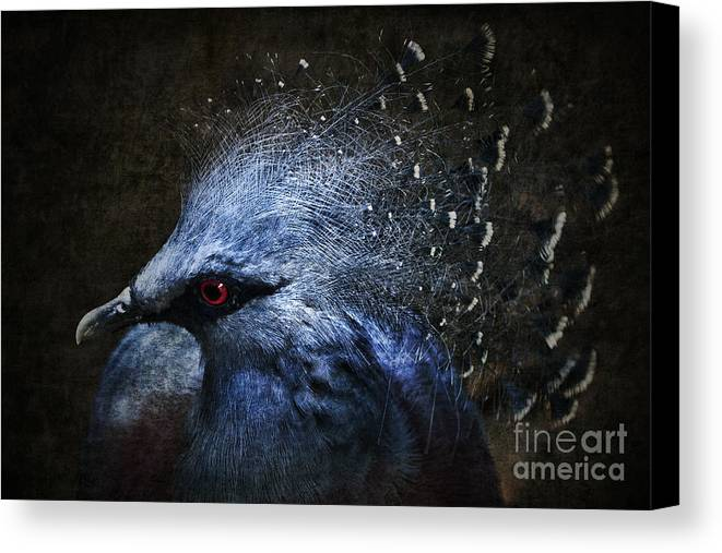 Photomanipulation Canvas Print featuring the photograph Ornamental Nature by Andrew Paranavitana