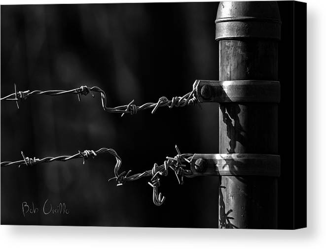 Fence Canvas Print featuring the photograph Other Side Of The Fence by Bob Orsillo
