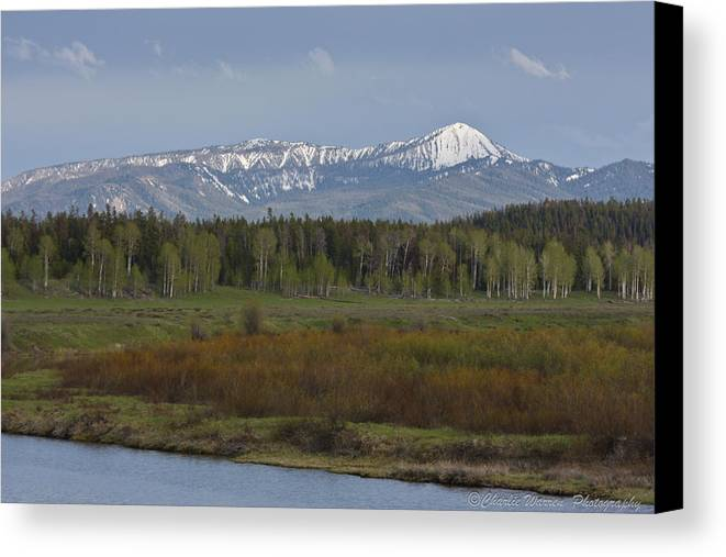 Oxbow Bend Canvas Print featuring the photograph Oxbow Bend by Charles Warren