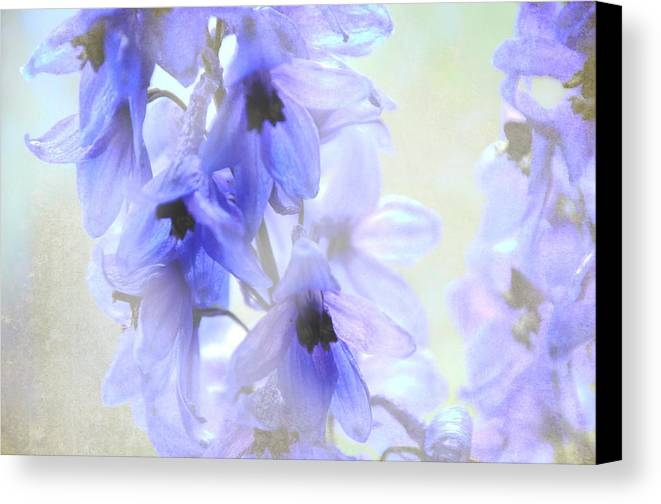 Jenny Rainbow Fine Art Photography Canvas Print featuring the photograph Passion For Flowers. Blue Dreams by Jenny Rainbow